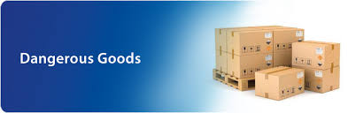 What is a Dangerous Goods Note (DGN)?